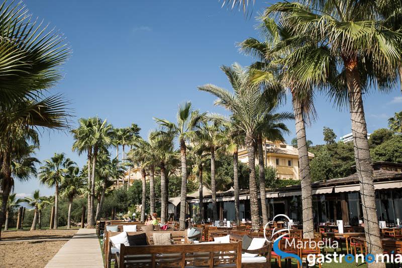 restaurante trocadero arena marbella